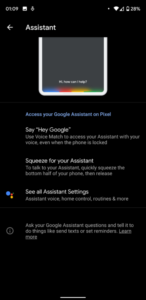 google-assistant-settings-a-329x676